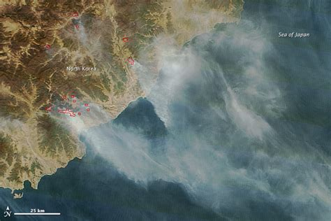 Fires in North Korea : Image of the Day